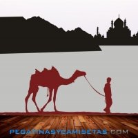 Camello del desierto