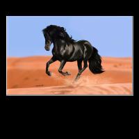 Caballo del desierto
